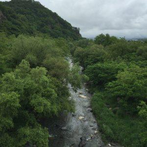 白州蒸留所すぐ近くの川を橋から撮影したもの。曇った天気がスコットランド感を醸し出しています。