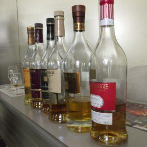 グレンモーレンジィ蒸留所のシリーズ商品。手前からミルション、18年、ネクタードール、キンタルバン、ラサンタ、オリジナル。
