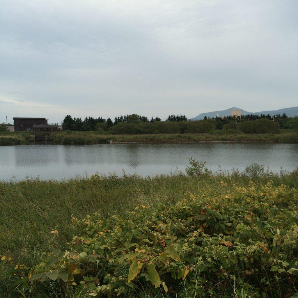 余市川を川沿いから。曇っているのも、スコットランド風で素敵です。