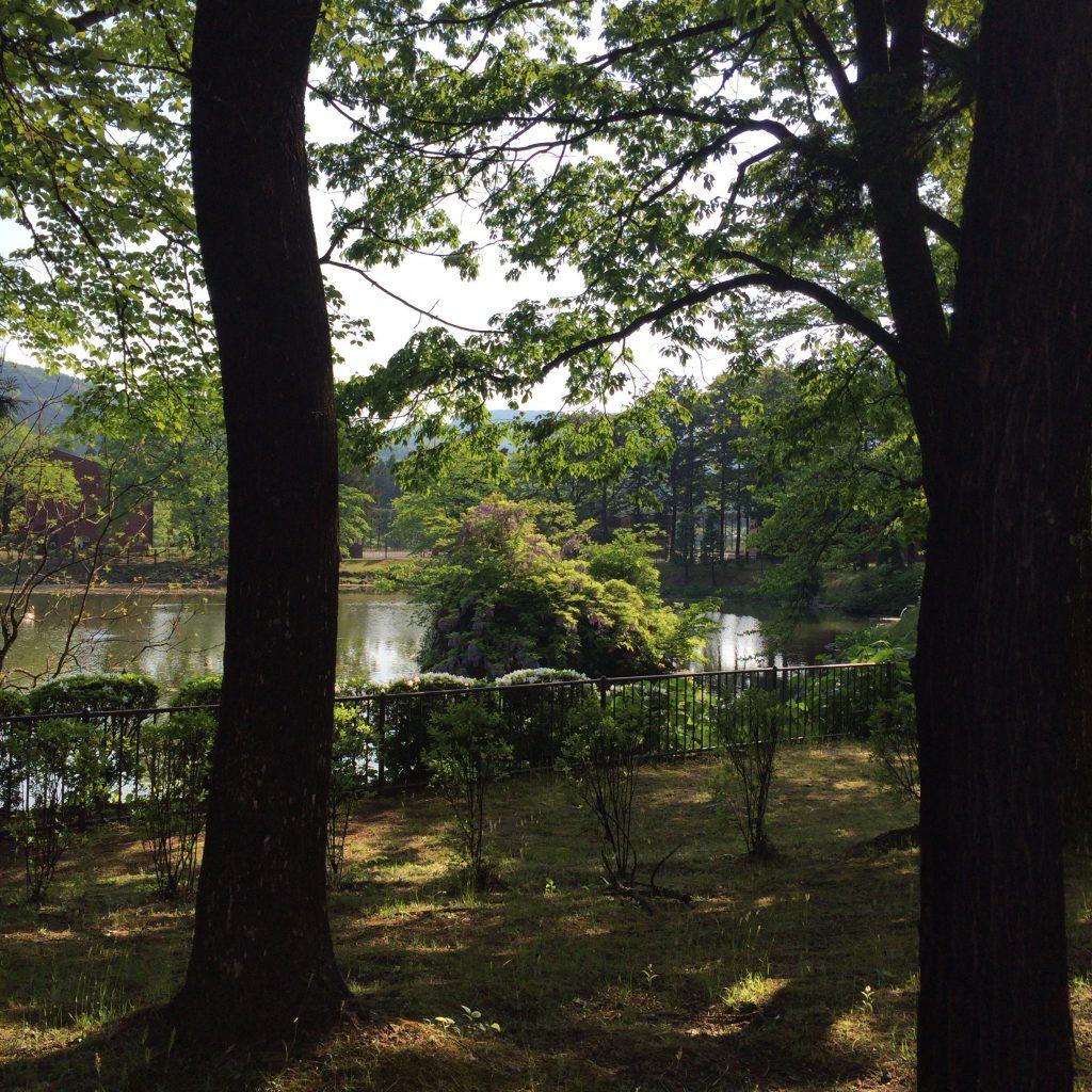 池に浮かぶ大岩。ダイナマイトで分割されて新川からここに運ばれました。